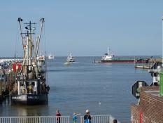 Am Außenhafen Harlesiel in nächster Umgebung vom Ferienhaus Kolks in Carolinensiel Harlesiel starten viele Kutter auf die Nordsee und die Fähre nach Wangerooge